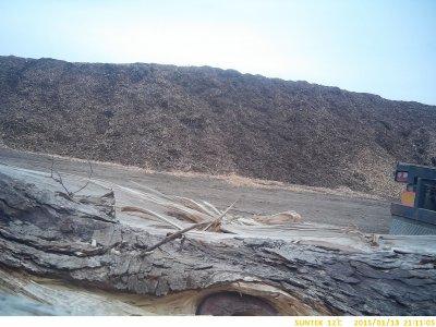 žemės sklypų, miškų sutvarkymas