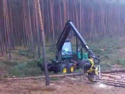 Miško pjovimas, traukimas kaina komplekta nuo 11eur