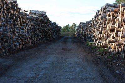 Pastoviai perkame apvalią medieną