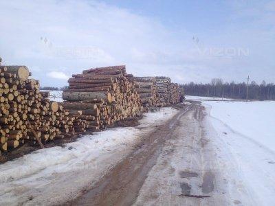Pastoviai perkame miškus su žeme ir išsikirtimui