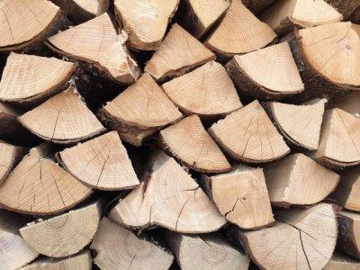 Perkame įvairią malkinę medieną - spygliuočių, lapuočių